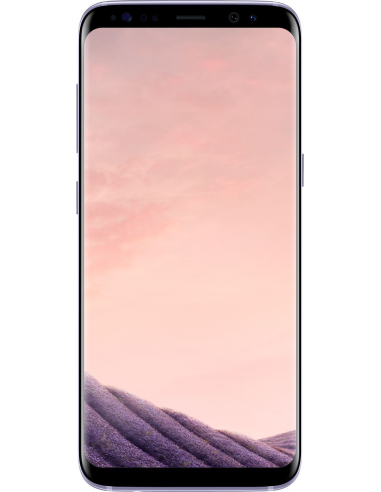 Samsung Galaxy S8 G950F Orchid Gray...